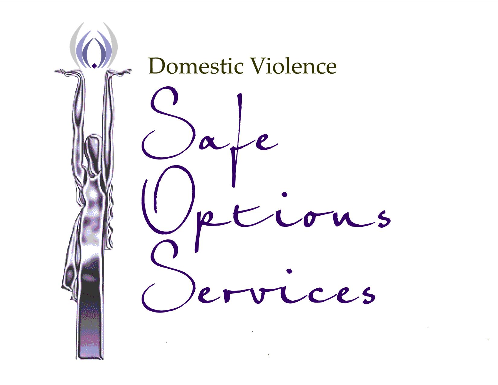 Domestic Violence Safe Option Services